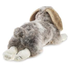 2892 Hangoor konijn