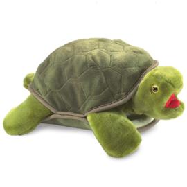 2021 Schildpad