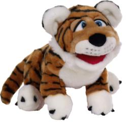 L786 Paco de tijger