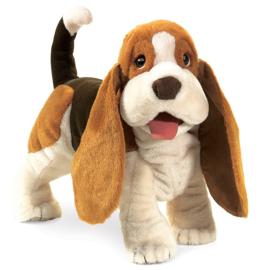 2919 Basset hond