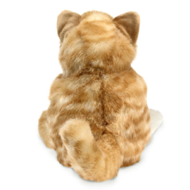 2845 Oranje gestreepte kat