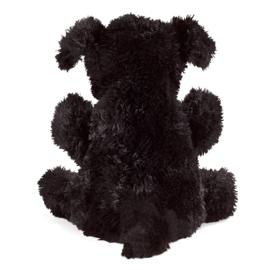 3125 kleine hond