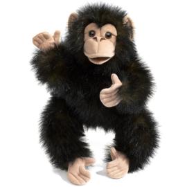 2877 Baby chimpansee