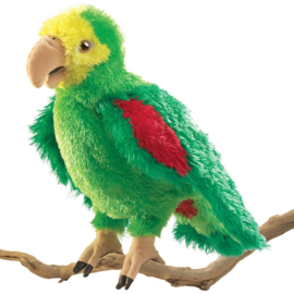 2592 Amazone papegaai