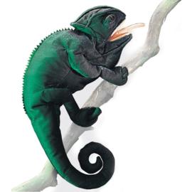 2215 Kameleon
