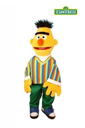 LS201 Bert