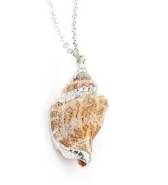 Schelpen ketting Seashell Silver
