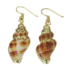 Schelpen oorbellen Ribbed Seashell Gold