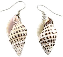 Schelpen oorbellen Small Trumpet Shell