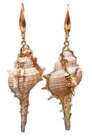 Schelpen oorbellen Shell Cabrit Gold
