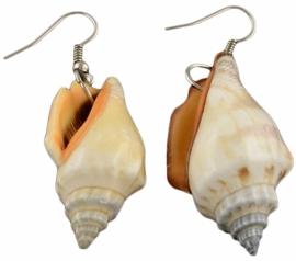 Schelpen oorbellen Big Trumpet Shell