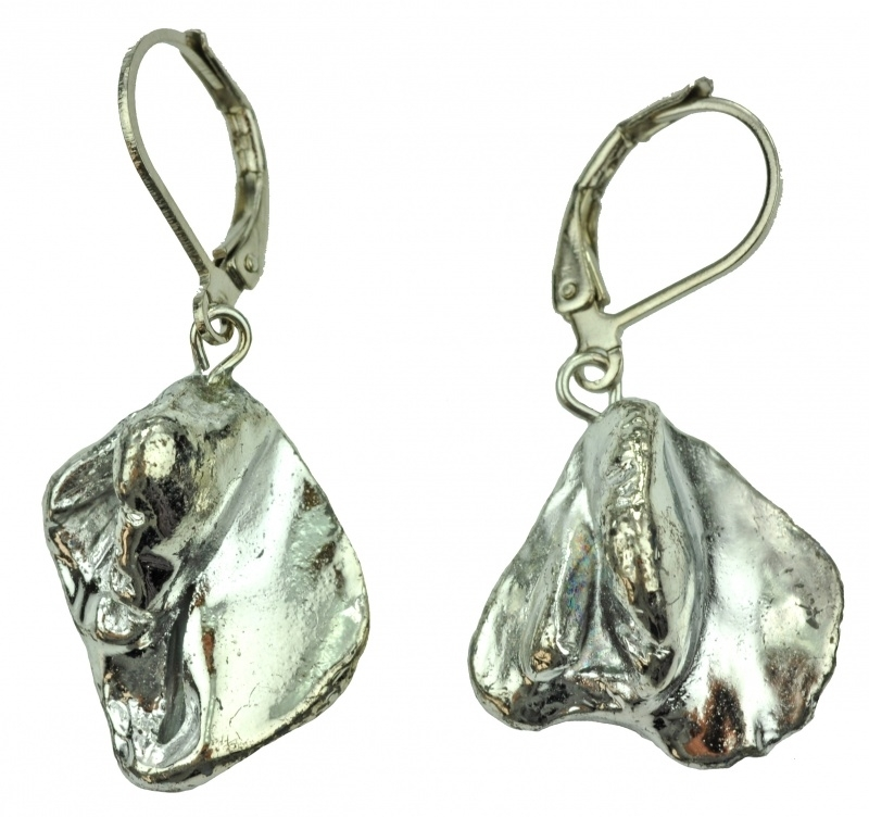 Schelpen oorbellen Shell Silver