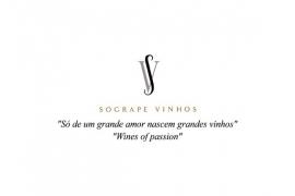 Grão Vasco Branco