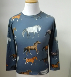 Paardenshirtje