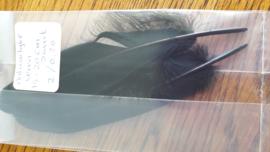Natuurlijke veren zwart 15-20 cm