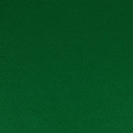 Vilt 20 x 30 cm,  Queens quality- 19, groen  2mm