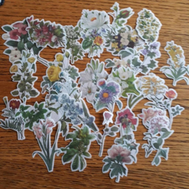 Bloemen, deco sticker mix