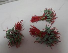 Meeldraden rood met groene bolletjes