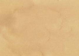 Amazona krijtverf Skin