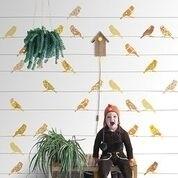 IK2032 Vogels geel