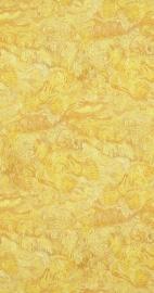 Van Gogh 17170