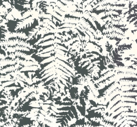Little Greene Fern - Off Black