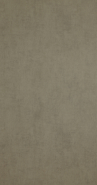 BN Walls Color Stories 218515