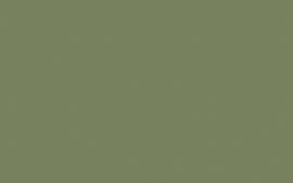 Little Greene verf Sage Green 80