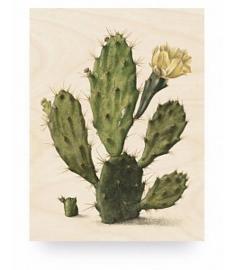 KEK Amsterdam Prints op Hout Botanical Cactus M