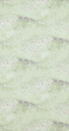 BN Walls Van Gogh 17211