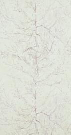 Van Gogh 17162