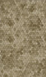 BN Walls Dimensions by Edward van Vliet 219587