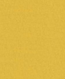 Van Gogh 220077