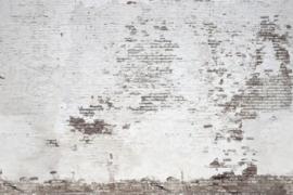 Rebel Walls R14321