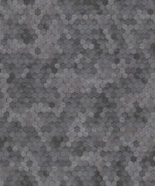 BN Walls Dimensions by Edward van Vliet 219581