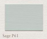 P61 Sage