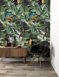 KEK Amsterdam Botanical Birds WP-579