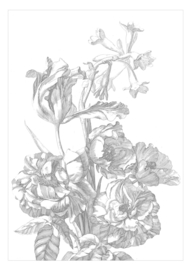 KEK Amsterdam Engraved Flowers WP-668, WP-670, WP-335