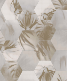 BN Walls Dimensions by Edward van Vliet 219572