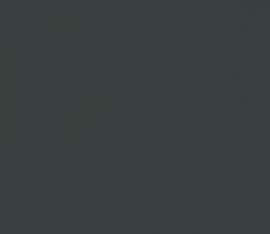 Amazona krijtverf Duiker-Zwart
