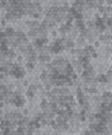 BN Walls Dimensions by Edward van Vliet 219588