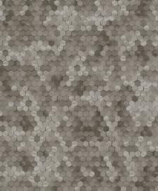 BN Walls Dimensions by Edward van Vliet 219589