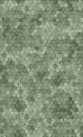 BN Walls Dimensions by Edward van Vliet 219586