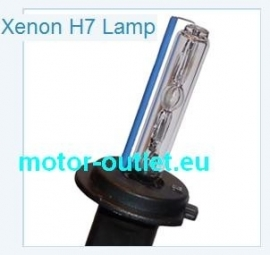 Lamp vervangingslamp  H7 Xenon 8000K