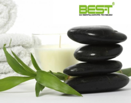 BEST Pre/Post massage olie 369