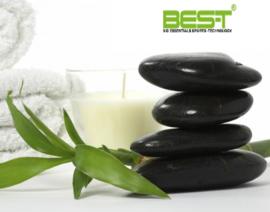 BEST Pre/Post massage olie 369