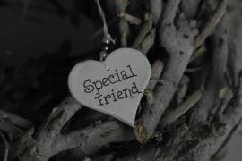 teksthartje 'Special Friend'