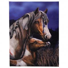 Apache - wandbord van Lisa Parker - 25 x 19 cm