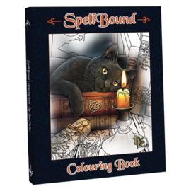 Kleurenboek 'Spellbound' van Lisa Parker  A4 formaat