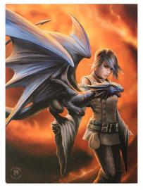 Dragon Trainer Anne Stokes canvas wandbord 25 x 19 cm